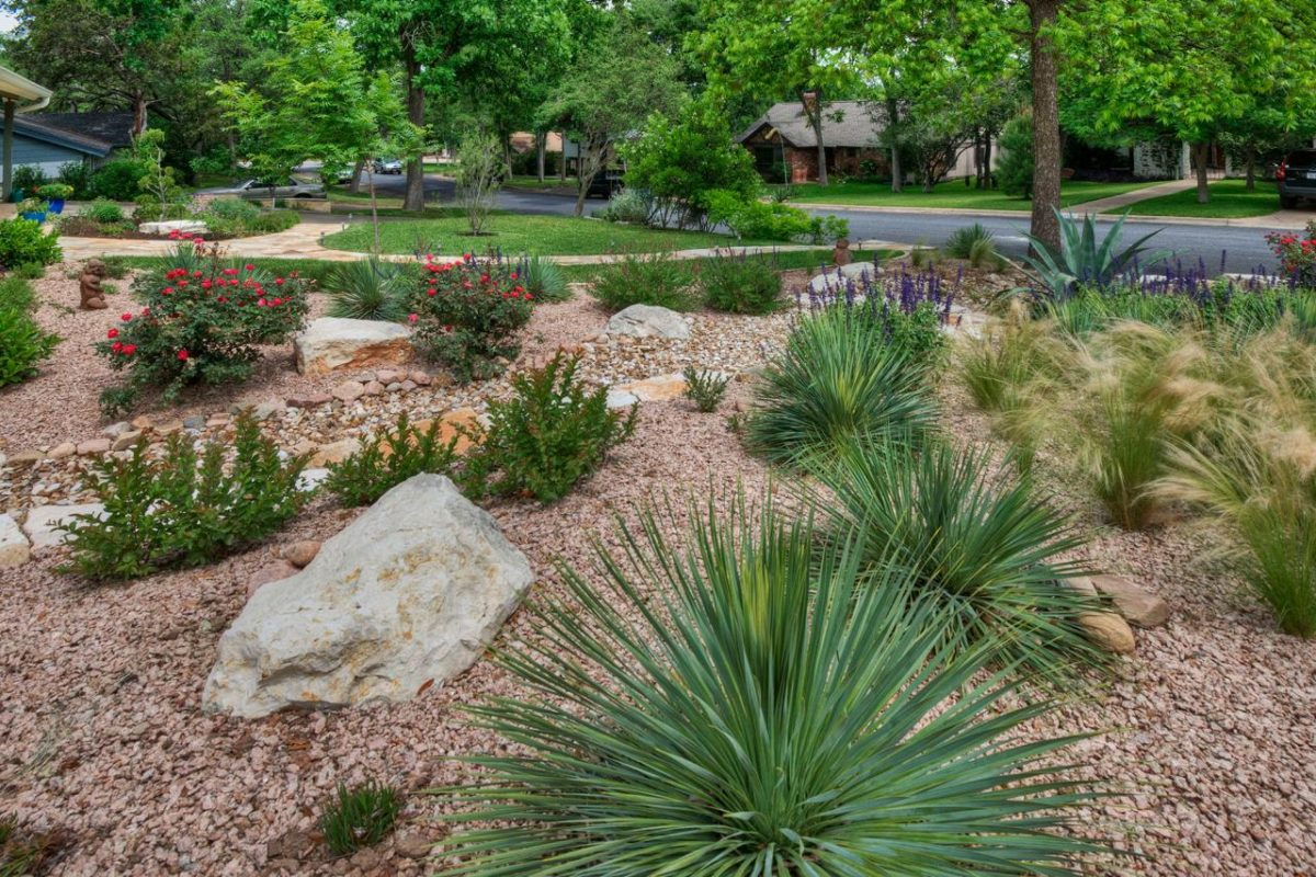 Landscaping Ideas Photo Gallery from Sutherland Landscape ... on Xeriscape Backyard Designs  id=81334