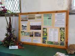 Bell Mere Pool display