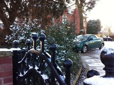 gate-snow