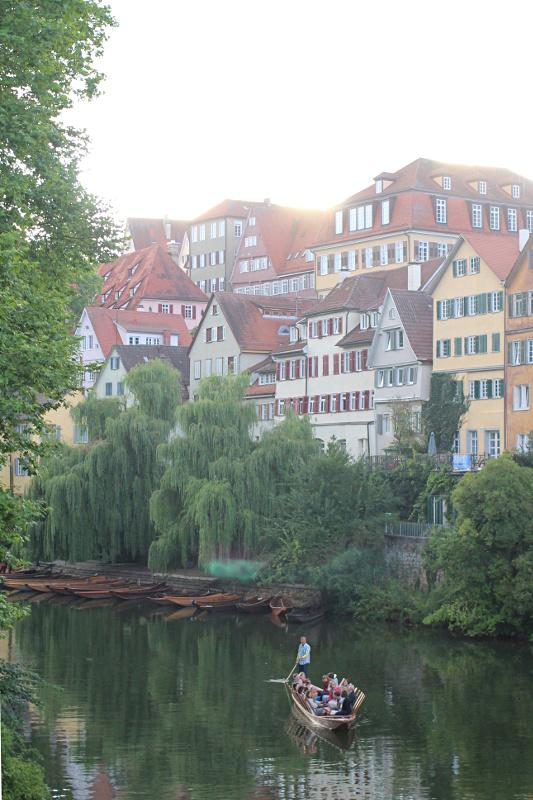Die Neckarfront im Gegenlicht