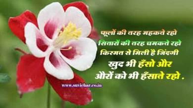 Photo of फूलों की तरह महकते रहो