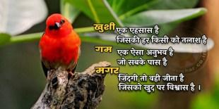 ख़ुशी एक एहसास है - khushi ek ehsaas hai
