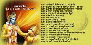 भगवद गीता, प्रत्येक अध्याय एक वाक्य में