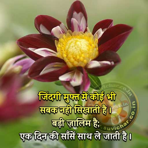 Life Quotes Status in Hindi