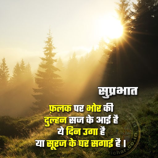 Good morning - suprabhat