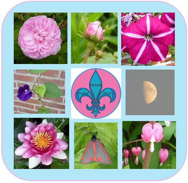 Inspratie op doen uit de tuin (Bloemen)