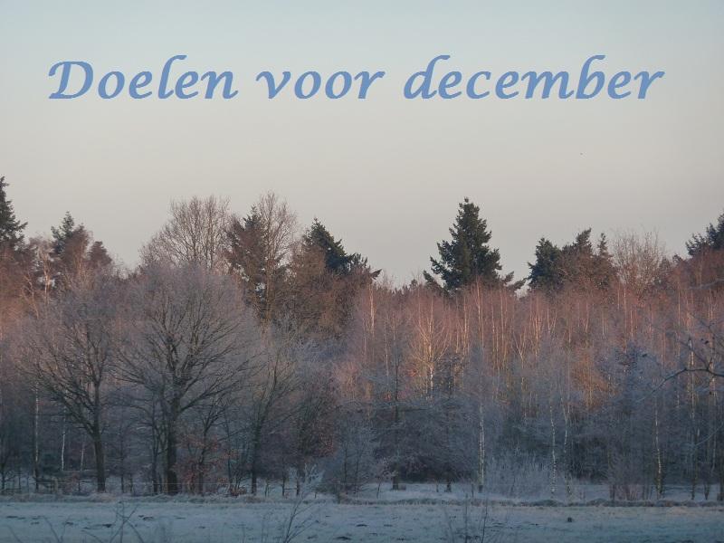 doelen voor december