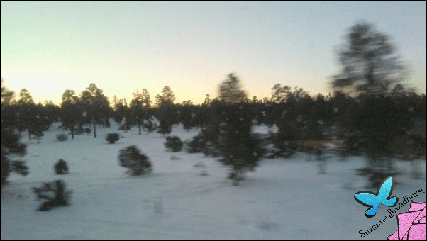 From the Speeding Train 4