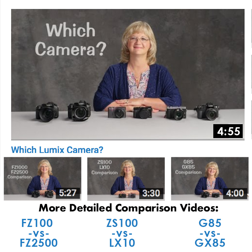 Which Lumix Camera?