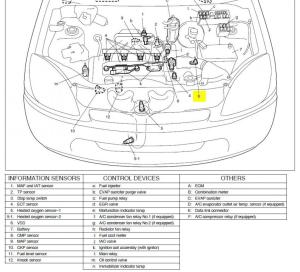 Repair Manual PDF: Repair Manual 2000 Suzuki Grand Vitara