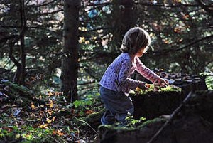 149814-stock-photo-child-nature-girl-forest-playing-kindergarten