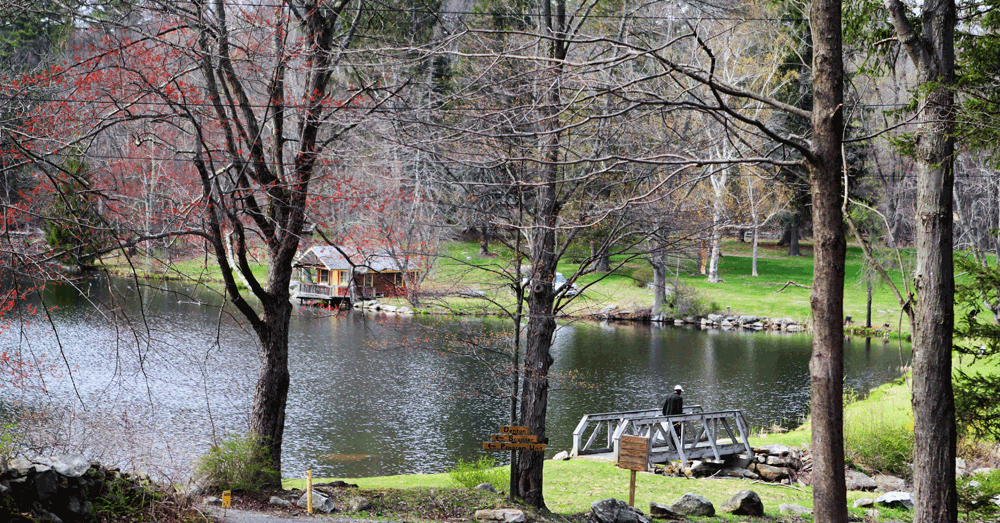 Denton Lake is a small pond for fishing and picnicking in New York State