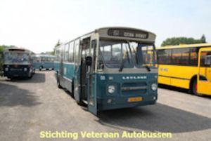 55-SVA TM