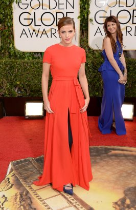 Golden Globe Awards 2014 in Dior Couture.