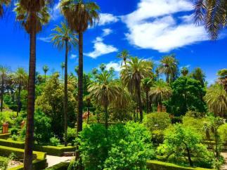 Sevilla, Seville, Spain, Travel, Europe, Photography, Trip, Guide