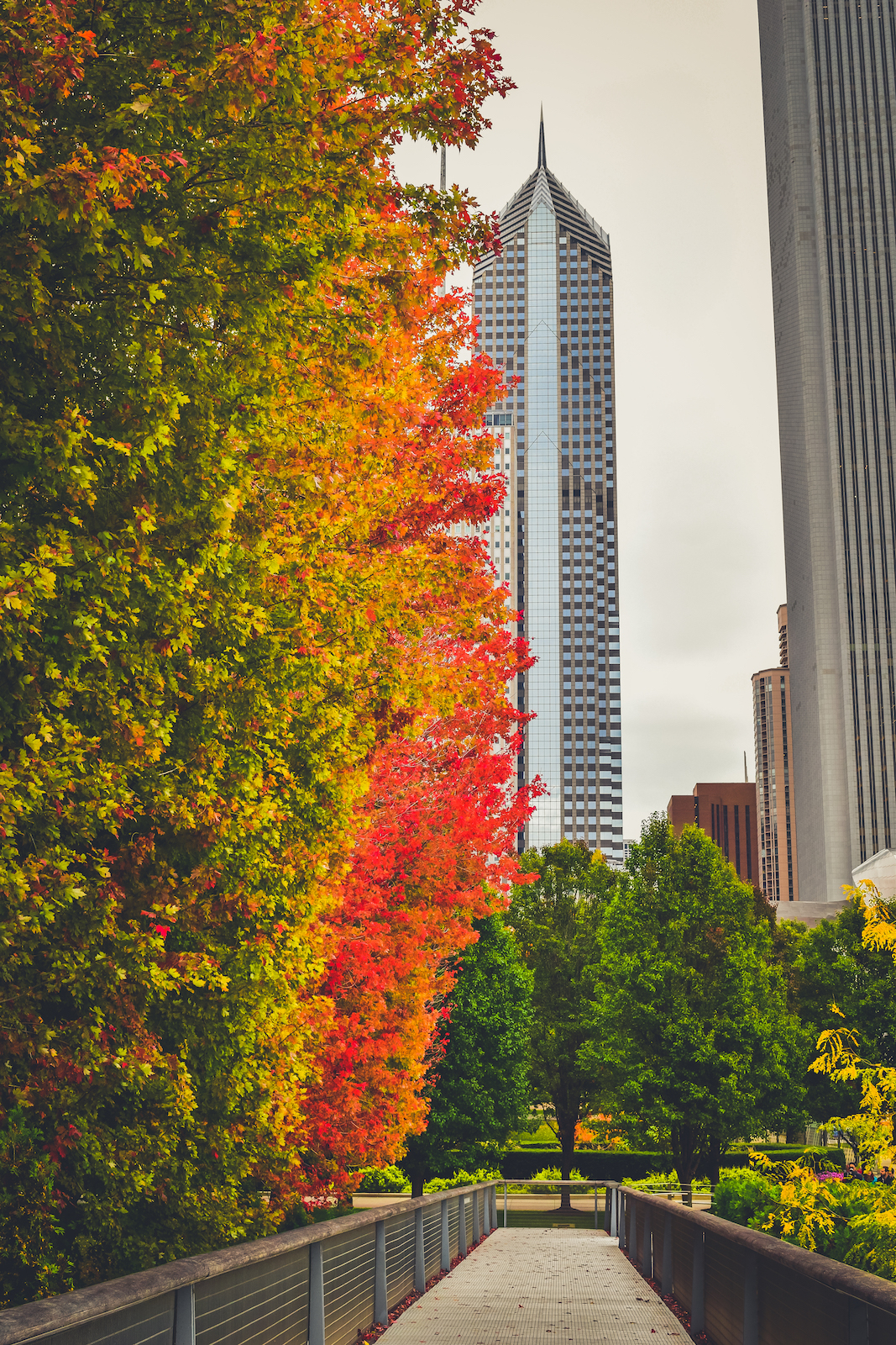 A First Timers Weekend City Guide to Chicago Millennium Park Fall time autumn Travel guide to chicago illinois blog what to do what to see where to go 3 days-1