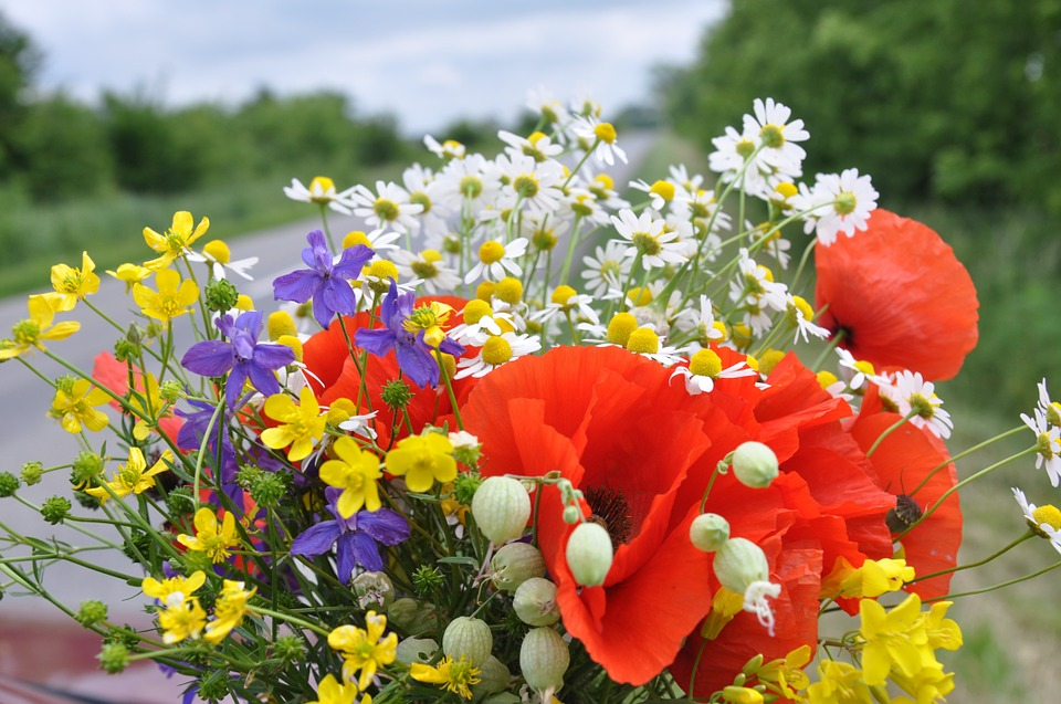 Svatební kytice zlučních květů je trendem přírodních svateb!