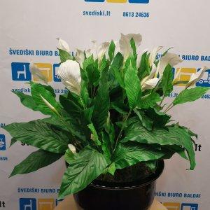 Svediski.lt Terrakultur Gėlių Vazonas Su Dirbtinomis Gėlėmis, Švedija