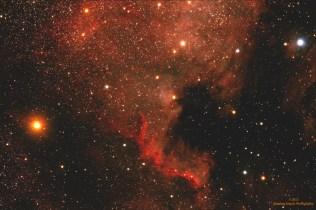 Maglina Severna Amerika, NGC 7000, u sazveždju Labud