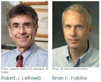 Nobelova nagrada 2012 - hemija 1