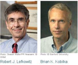 Nobelova nagrada 2012 - hemija 9