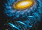 """Predavanje: """"Život u kosmosu – astrofizička determinisanost"""" 2"""