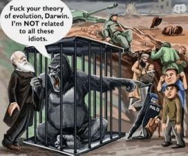 Čarls Darvin 9