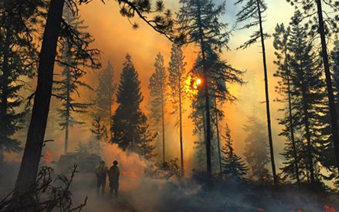 New tool helps Oregon residents prepare for wildfires
