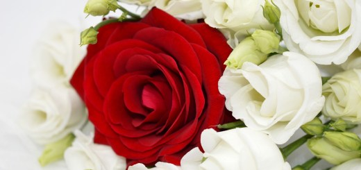 Roses Bouquet Of Roses Red Rose  - neelam279 / Pixabay