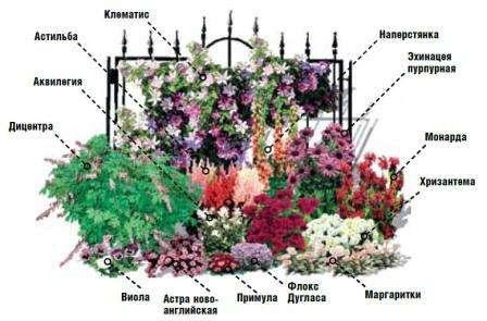 Миксбордер своими руками: схема, фото, подбор растений
