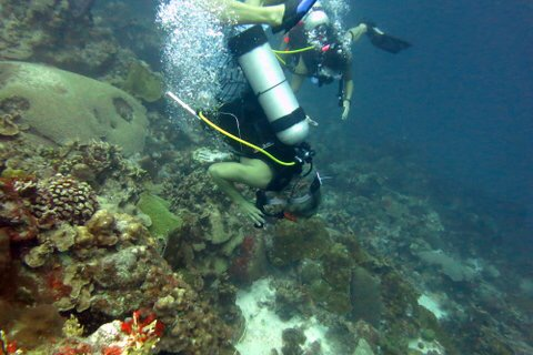 Dive Buoyant