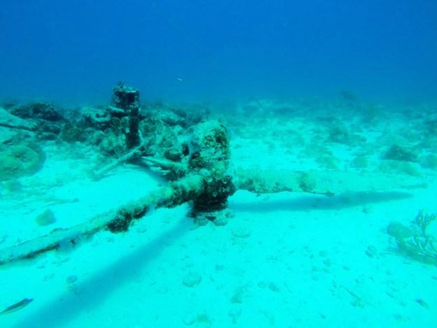 Arashi Dive Site