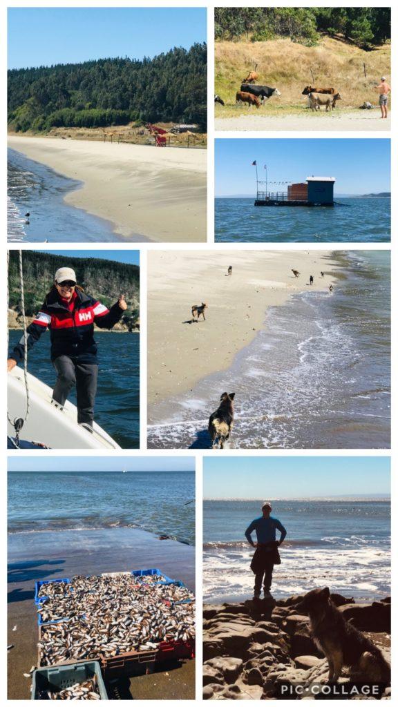 Bahia Llucio beach walk