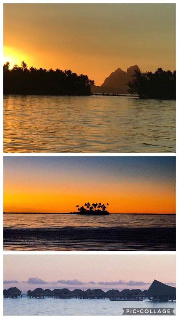 Sunset Beauties