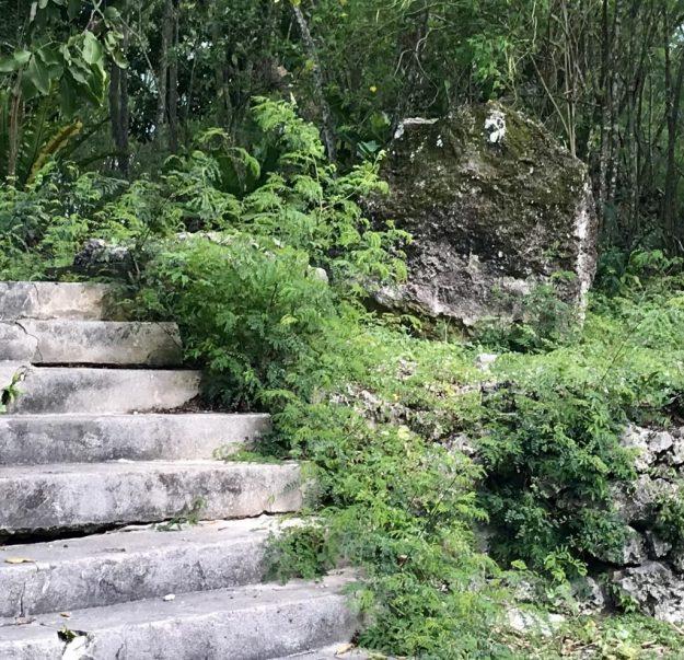 Phosphate rock near steps