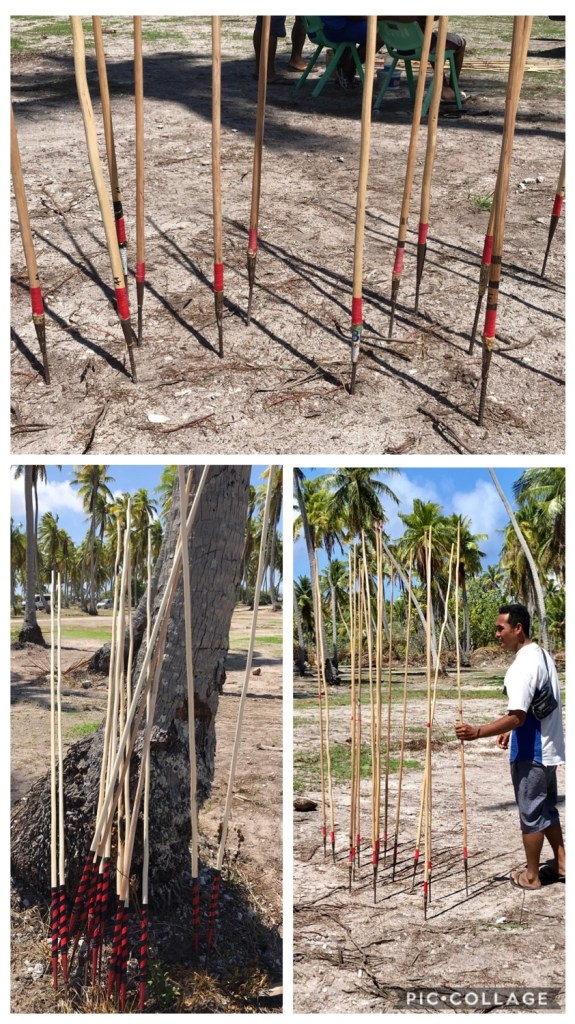 Javelins for coconut toss