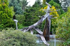 Royal Hobart Botanical Gardens