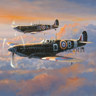 Spitfire Patrol Birthday/Greeting Card