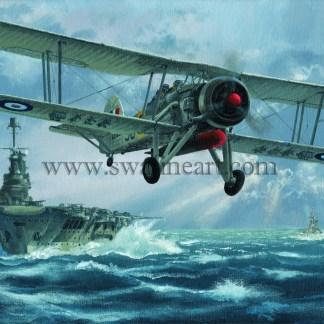 Swordfish Flight against the Bismark Greeting cards