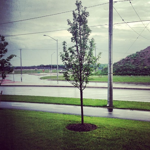 Got some BC weather @radventures
