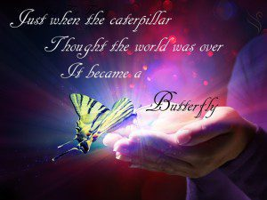Butterfly Funeral Quote