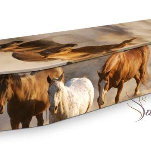 Wild Horses Coffin