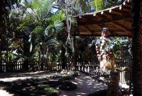 Tongan Guide