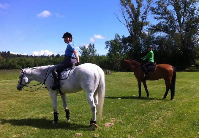 learning to ride a horse in wilsonville, or - swan training