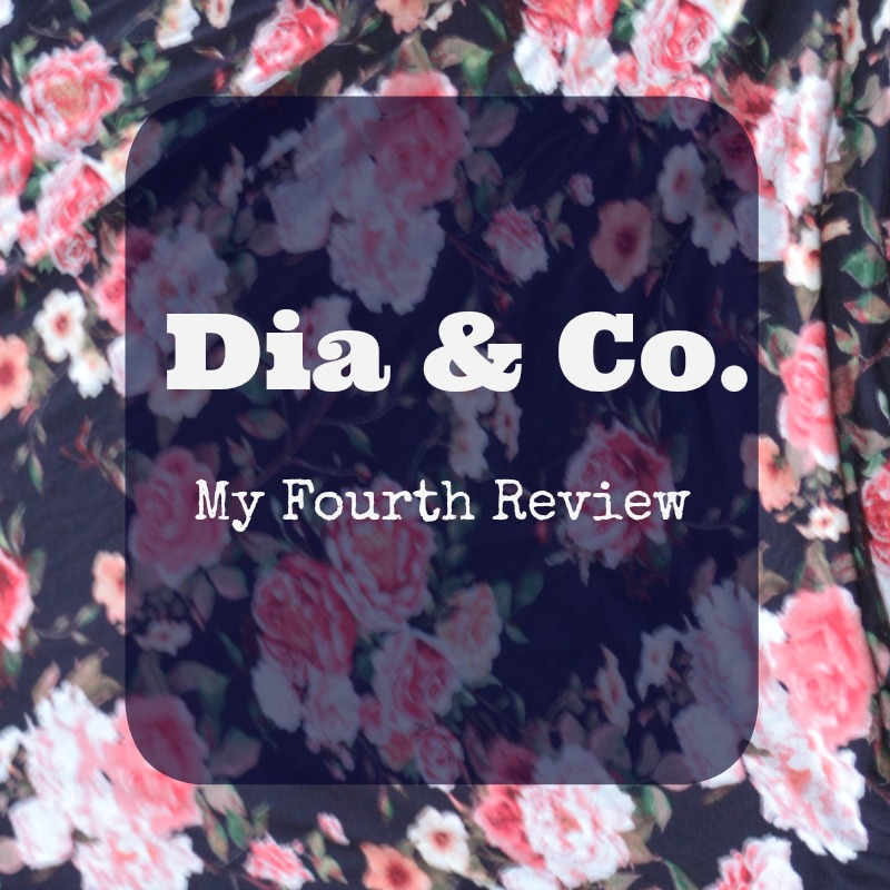 Dia & Co. Review: November 2016