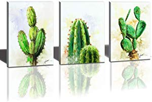 Hongwu Canvas Wall Art Cactus Plant Painting 3 Piece Sweepstakes