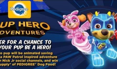 Viacom Pup Hero Adventures Contest