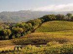 Macaroni Grill Tuscan Trip Giveaway - Win Trip