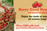 Farm Star Living Berry Good New Year Sweepstakes - Win Gift Card