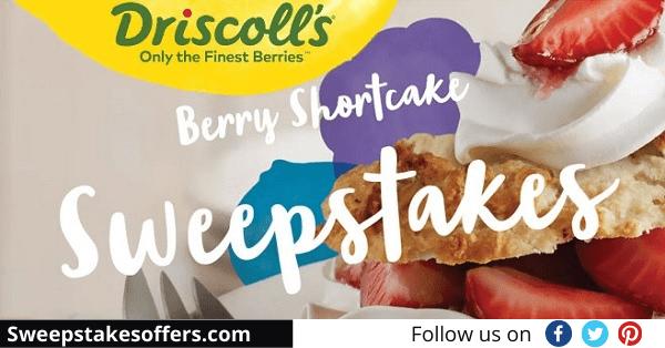 Driscolls Berries Sweepstakes